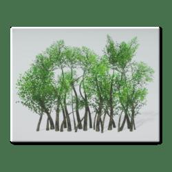 Trees - Line