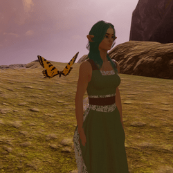 Animated Butterfly pet yellow