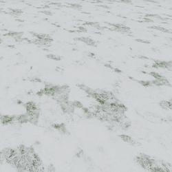 Frozen Snow on Grass Floor